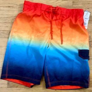 Men's Spray Blend Ombré E-Board Shorts